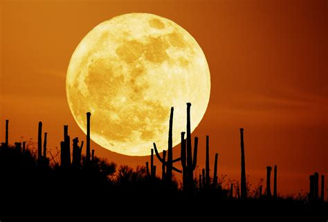 People of Earth: The Super Moon Will Not Cause Mass Floods