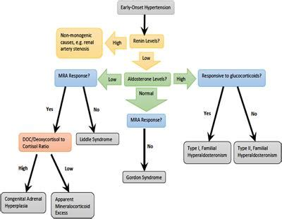 Frontiers   Overview of Monogenic or Mendelian Forms of